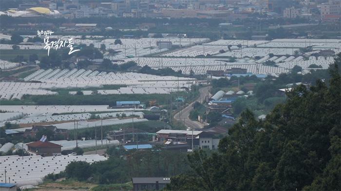 ▲ 사드 배치 후보지로 확정된 성주군 성산포대, 마을까지 거리가 약 200m에 불과하다.